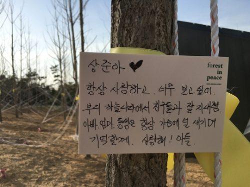 아직도 수학여행에서 돌아오지 못한 아이들을 기억하는 시민들의 힘으로 만들어진 '세월호 기억의 숲' ⓒ여성신문